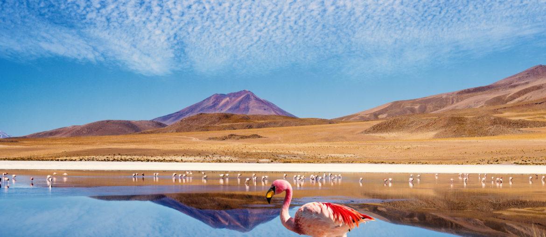 Skreddersydd tur: Peru og Bolivia