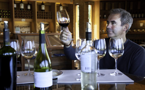 Vinsmaking vin