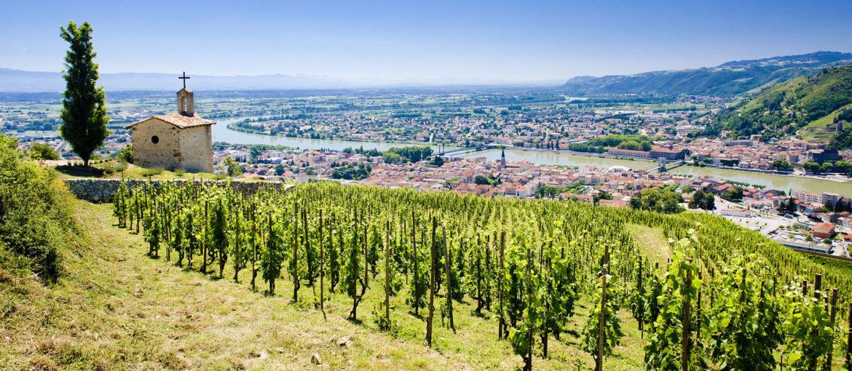 5* elvecruise i Provence og Burgund