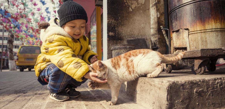 Kina barn