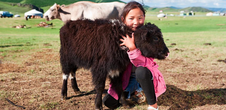 Mongolia jente yak