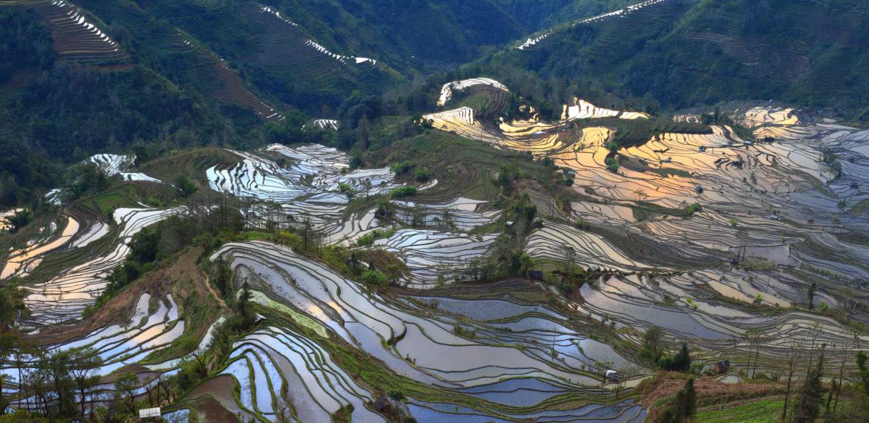 Yuanyang Kina