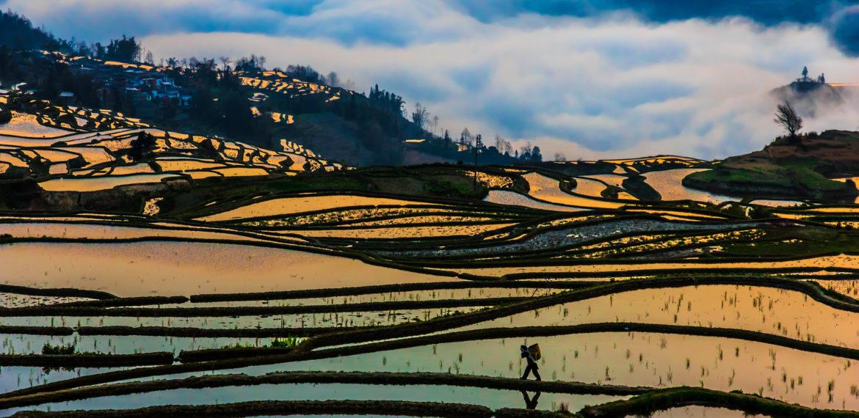 Yuanyang Yunnan Kina