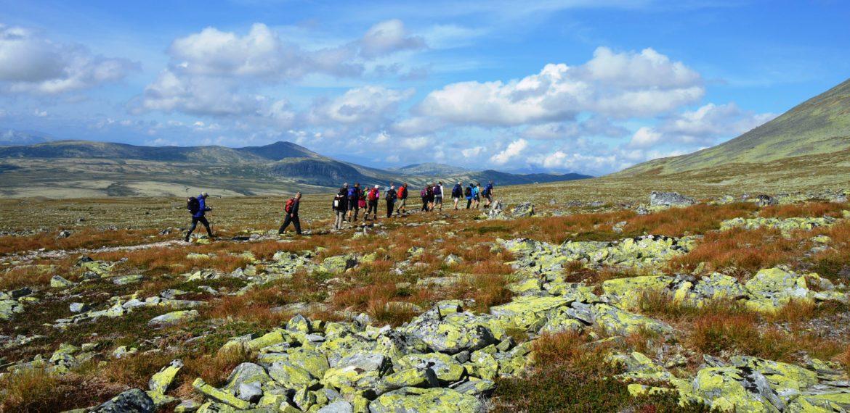 Rondane Foto Tor Erik Ree-Pedersen
