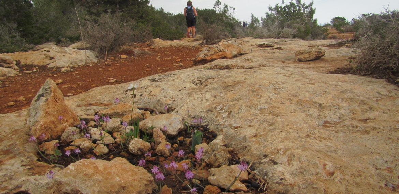 Nord- Kypros Foto Mette Østerhus
