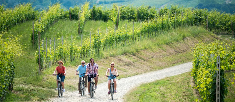 Sykkel sykling Aktiv Langhe Piemonte Italia