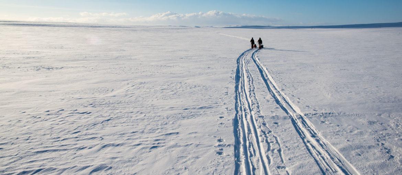 Ski på Finnmarksvidda Photo: Liv Engholm