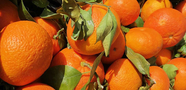 Bordeaux - appelsiner