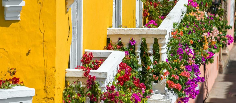 Cartagena er sterke farger og blomster!