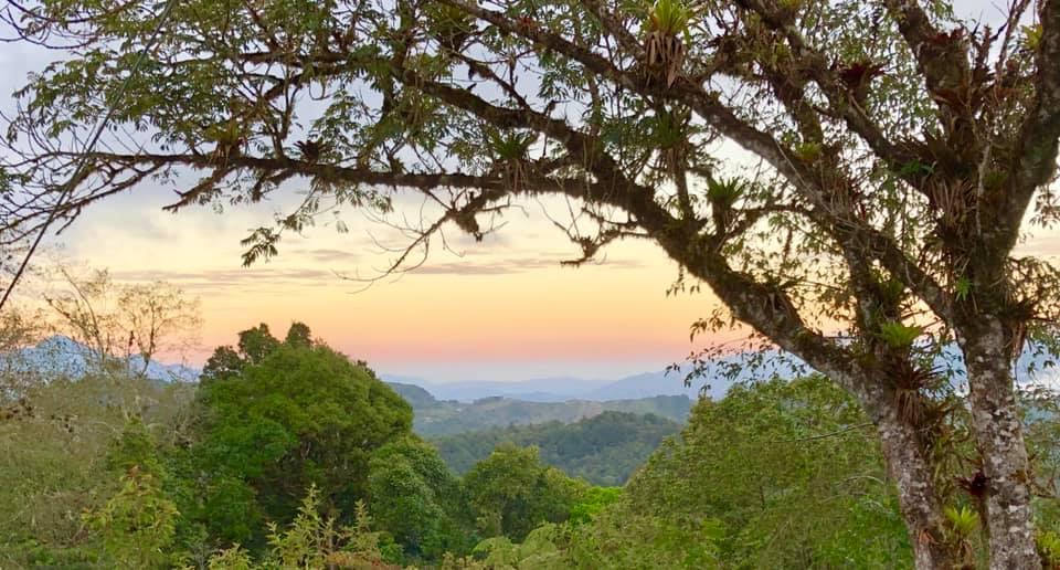 Costa Rica, Secto Cerro Alto- Napoles