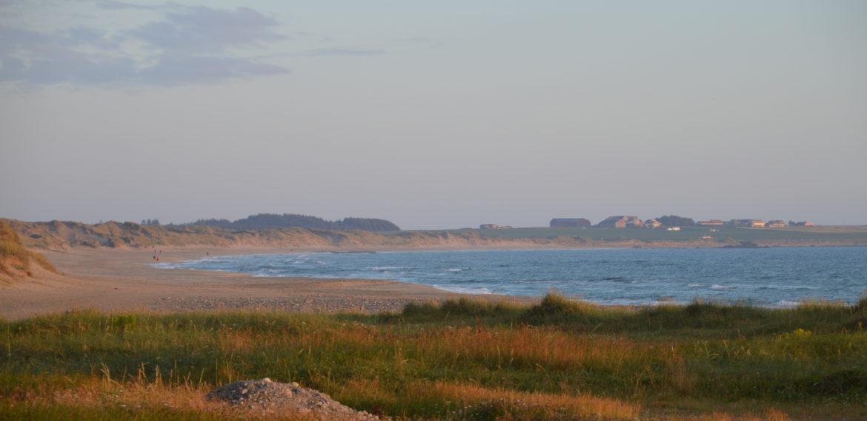 Jærkysten, Rogaland